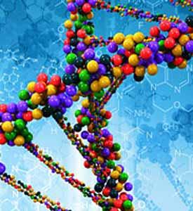 dna-rna-oligonucleotides DNA RNA oligonucleotide illustration how drug gene delivery may work