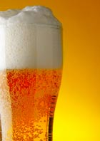 5379192-glass-of-beer-with-froth-Cut