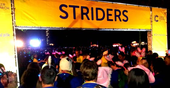 Shine Walk Striders