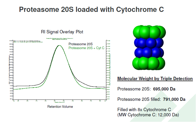 Proteasome20S-loaded-or-empty-slide-from-ppt
