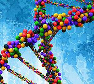 DNA-RNA_oligonucleotides_16692030_300x270