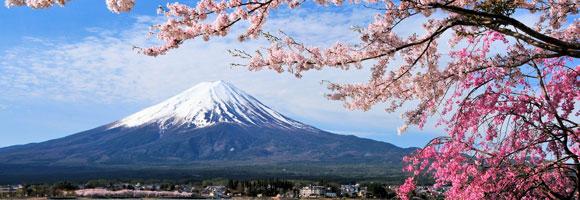 mount-fuji-and-cherry-tree--547227226_580x200