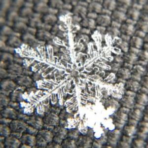 Snowblog_Snowflake_2