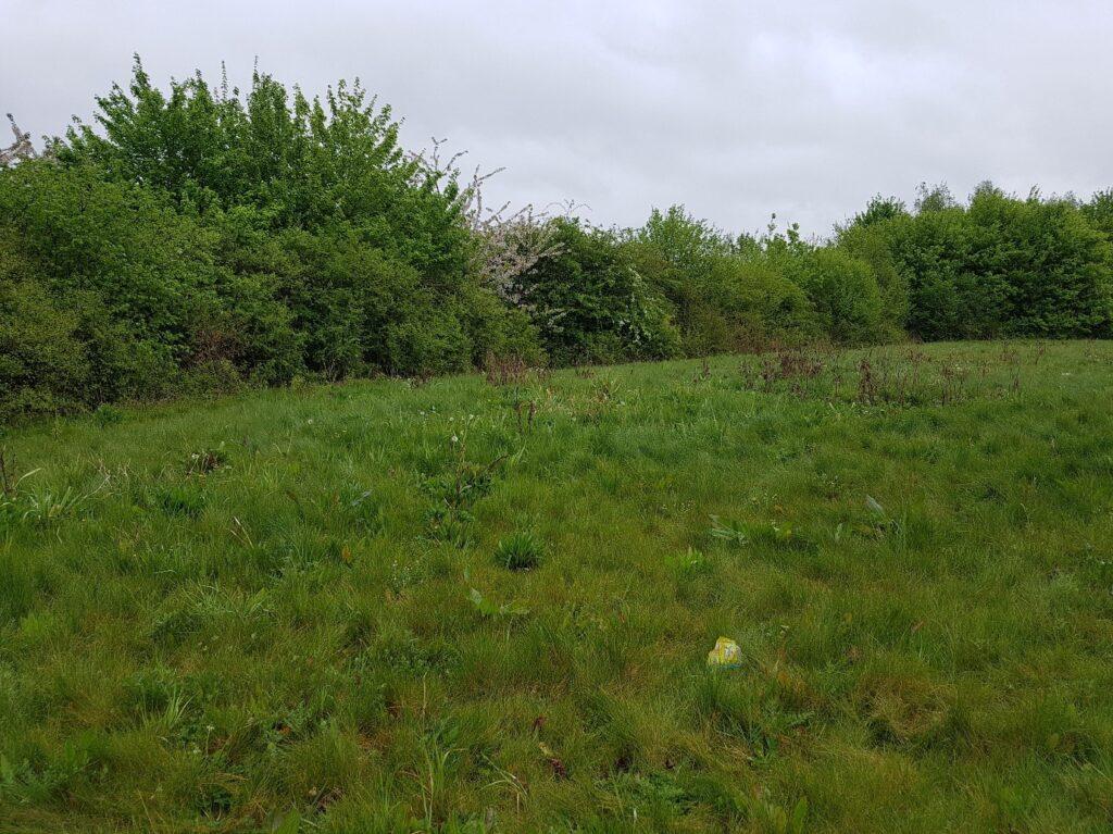 Figure 1. Social distancing opportunities in the garden